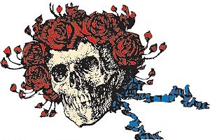 Grateful Dead skull and roses (Bertha)