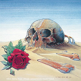 grateful dead skull with rose in the desert sand by stanley mouse